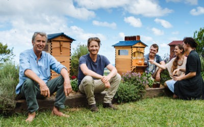 Honey on tap – straight from the hive!